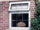 upvc windows 7